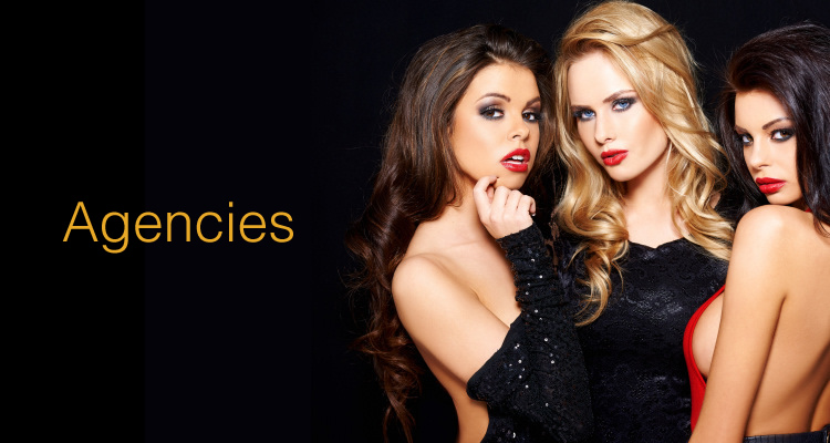 Escort Marketing Packages for Agencies